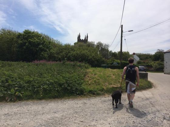Gwithian dog walk