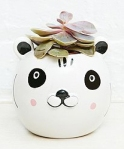 panda planter from urban outfitters