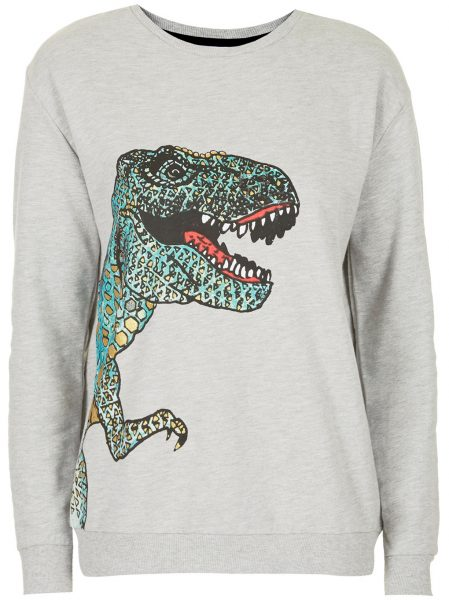 dinosaur jumper from topshop