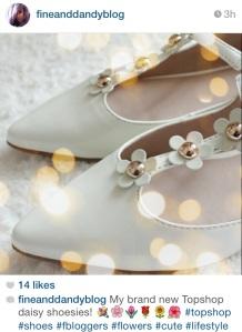 fineanddandyblog instagram