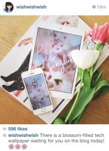 wishwishwish instagram