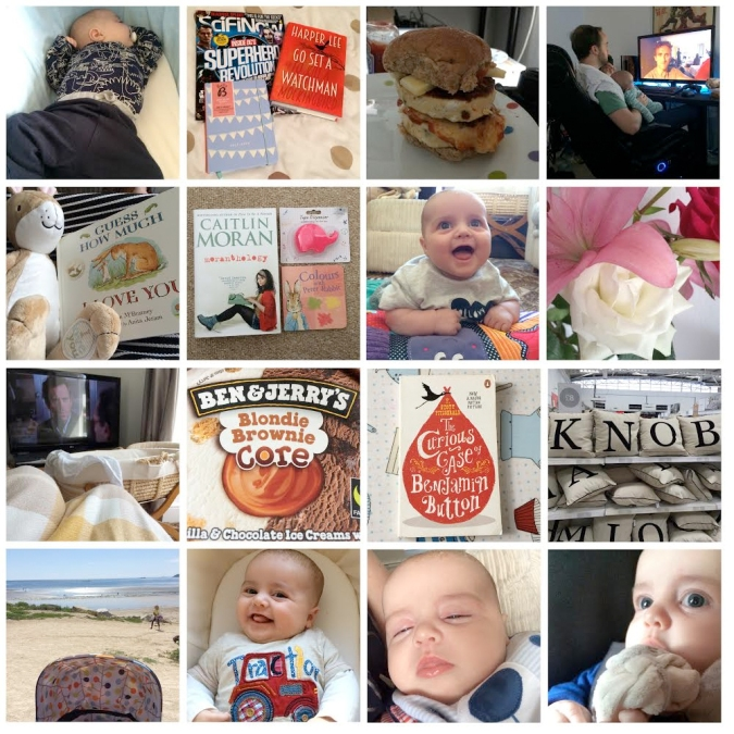 my life in photos august 2015