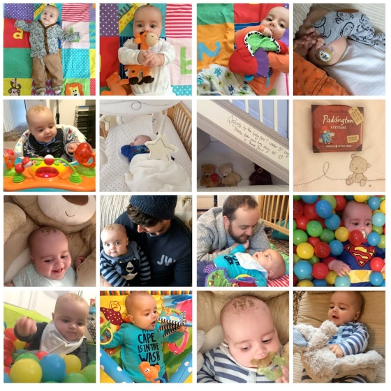 jenson's october in photos 2015
