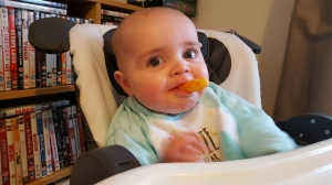 jenson's weaning journey - Organix carrot sticks