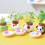 drinking planters from firebox