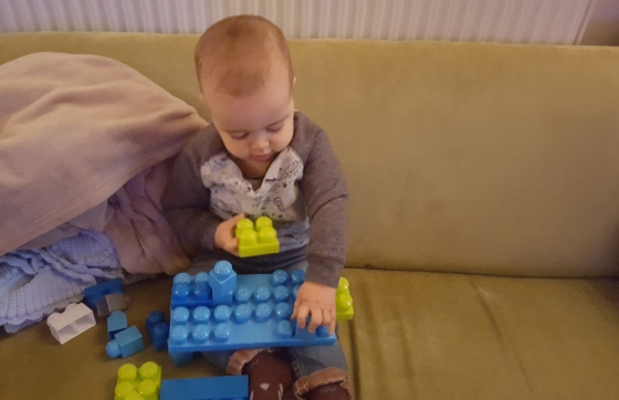 jenson building blocks