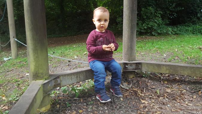 jenson autumn park