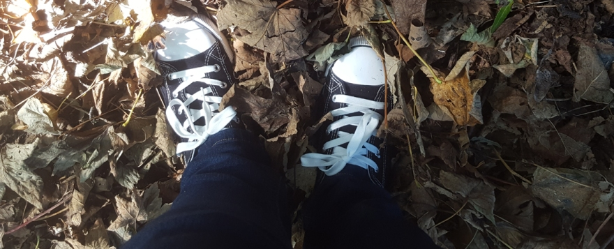 new shoes autumn leaves