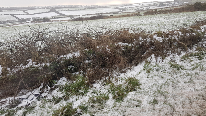 snow in Cornwall