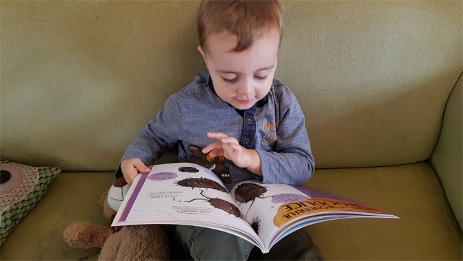 James' Giant Bug Book - review