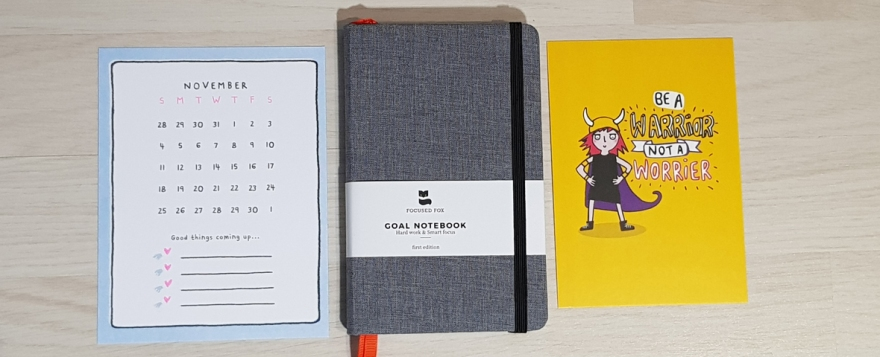 Focused Fox goals notebook review