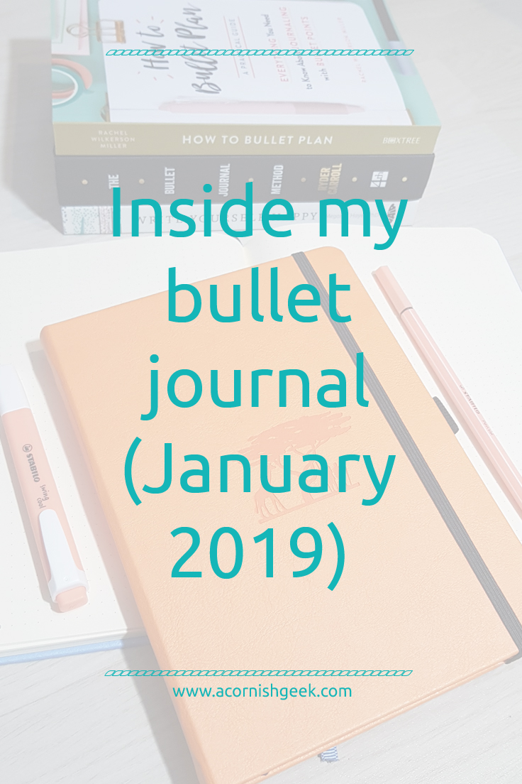 Inside my new Dingbats Earth Journal bullet journal (January 2019)