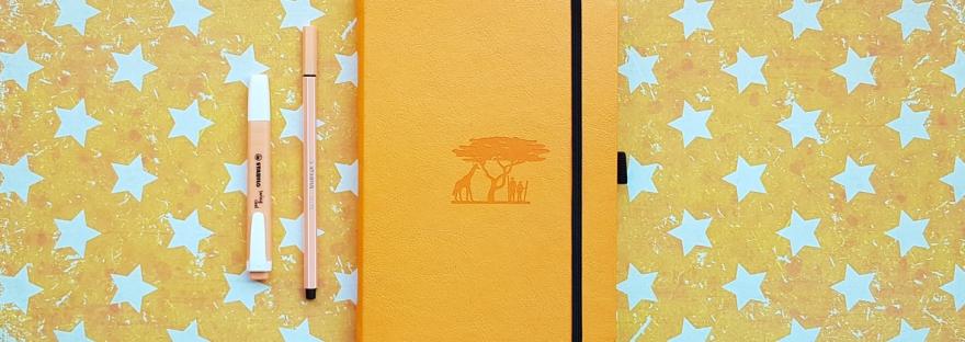 Six months of daily journaling - Dingbats Earth Journal. Bullet journal review